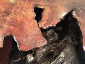 Oak Fiori di Bach